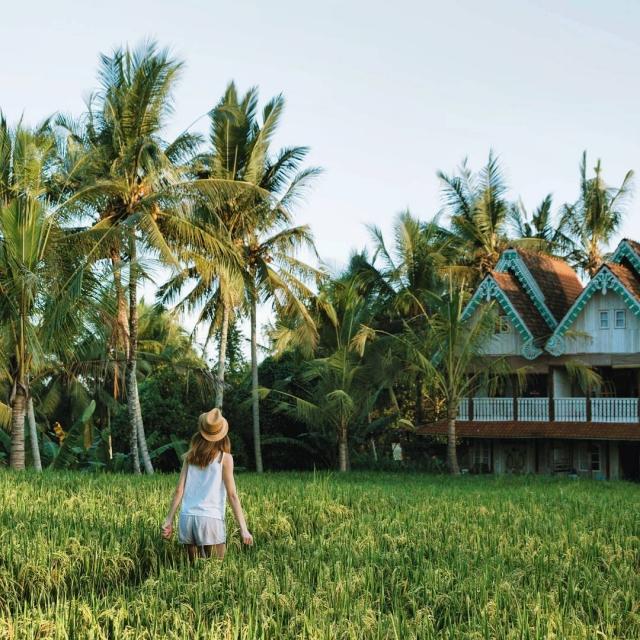Exploring UBUD rice fields Prvy den na Bali za namihellip