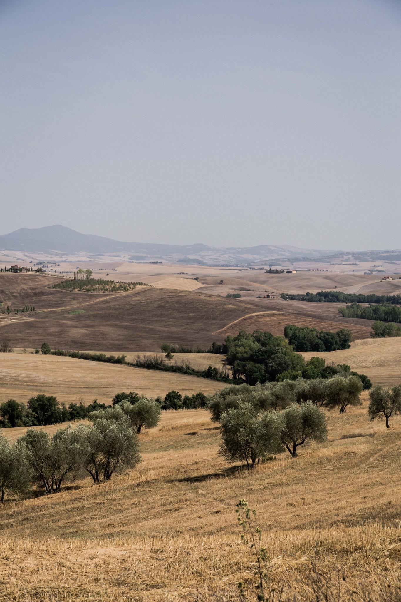 tuscany2 (25 of 39)