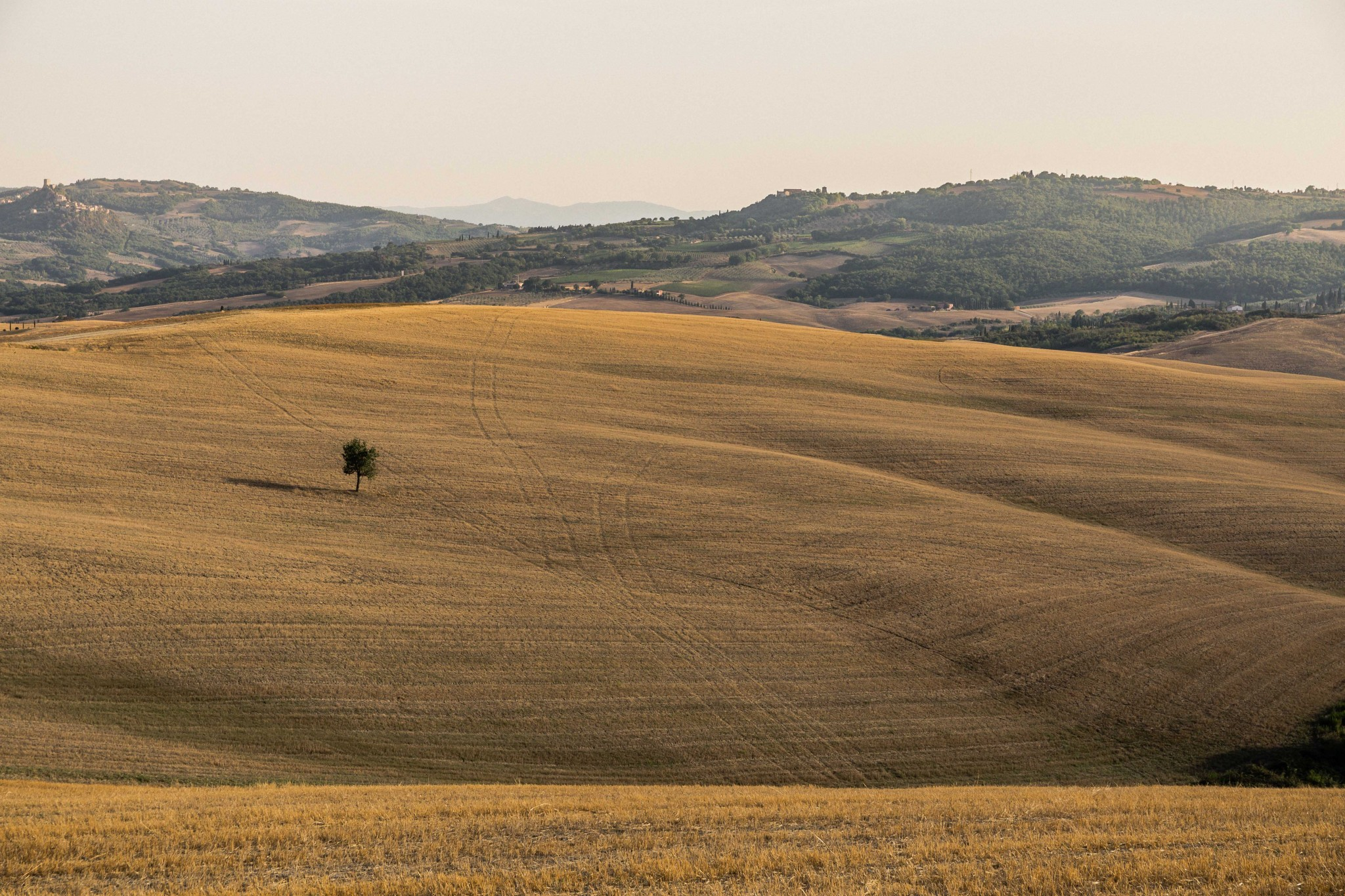 tuscany2 (29 of 39)