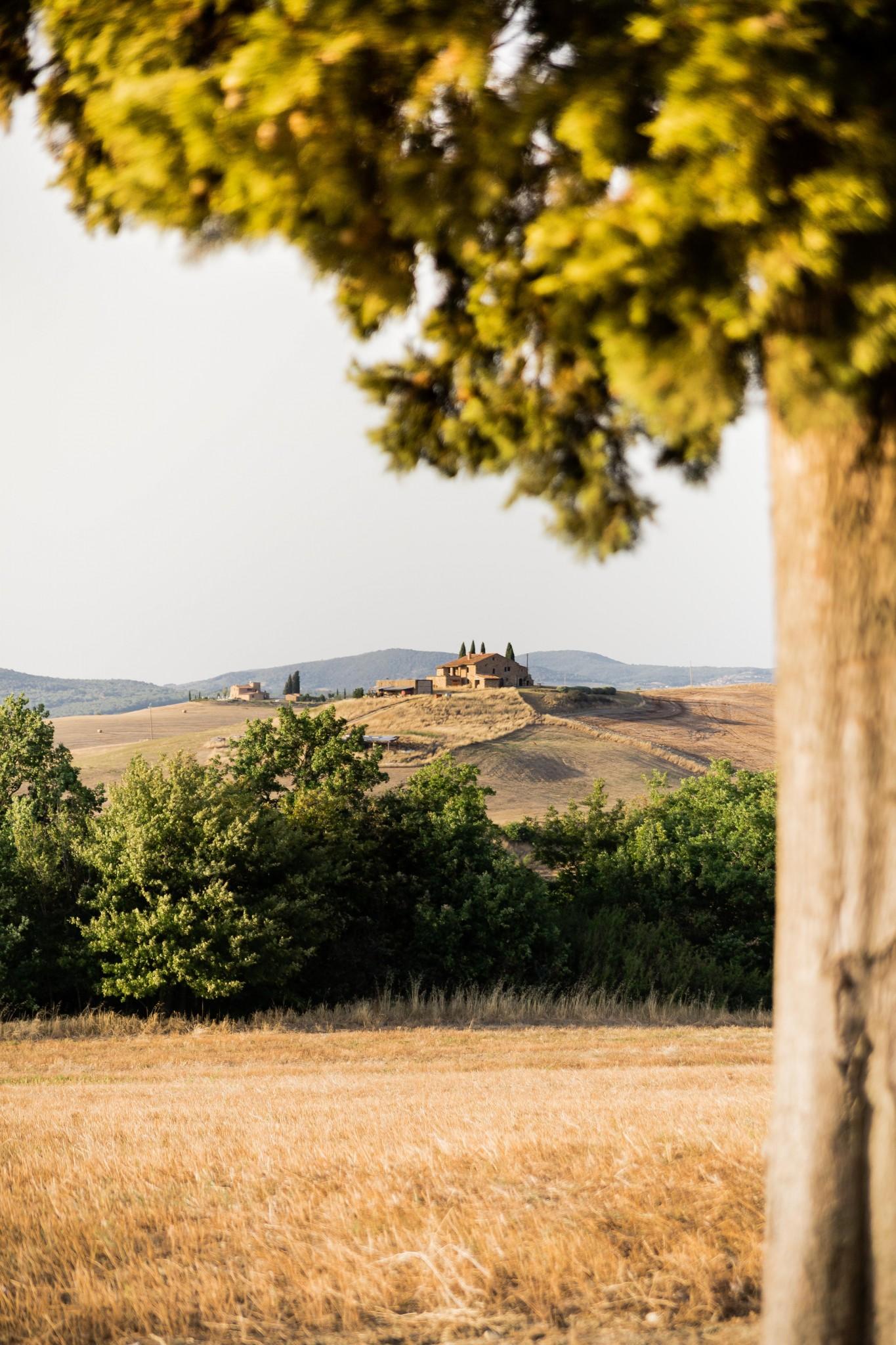 tuscany2 (31 of 39)