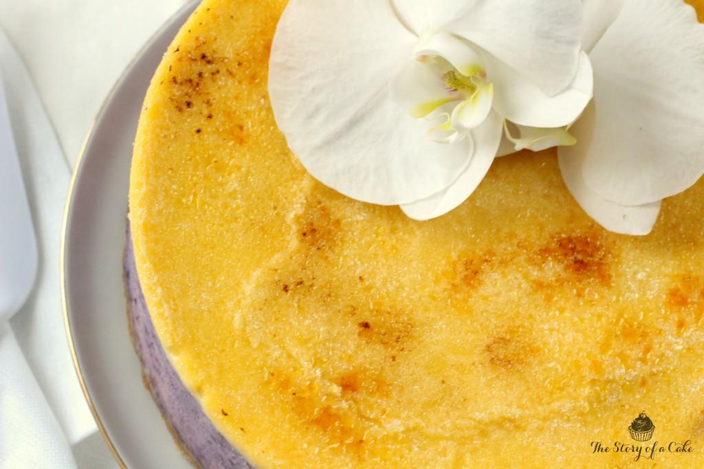 creme brulee cheesecake4