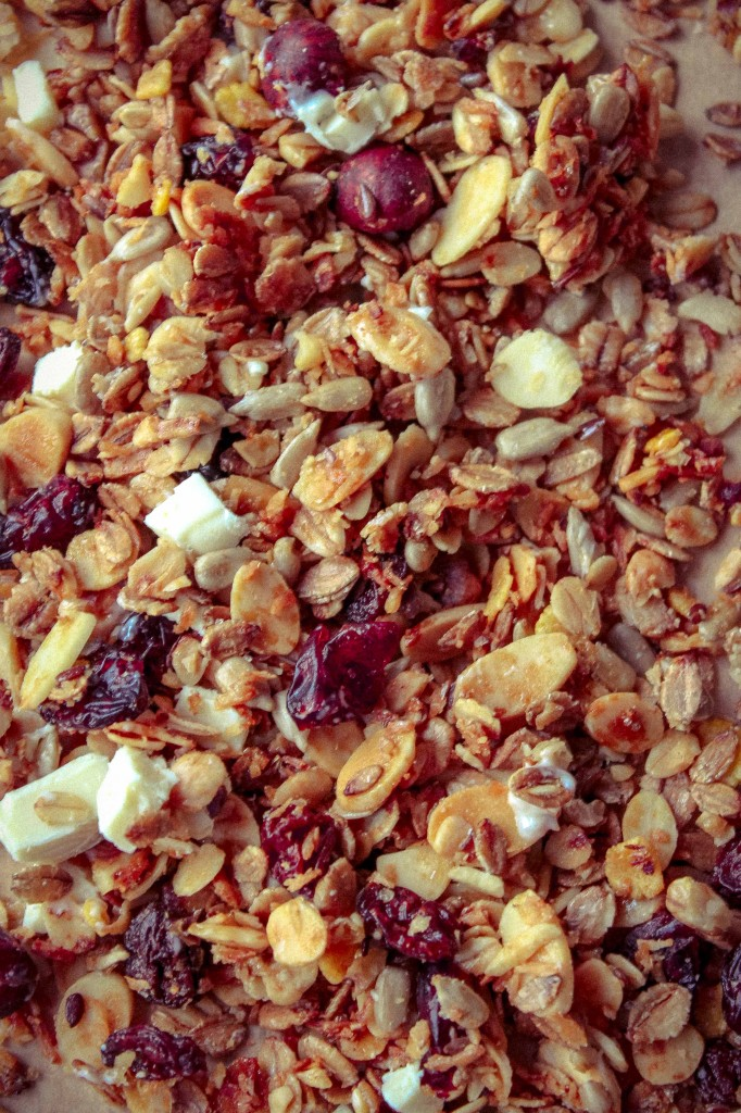 granola2-4734