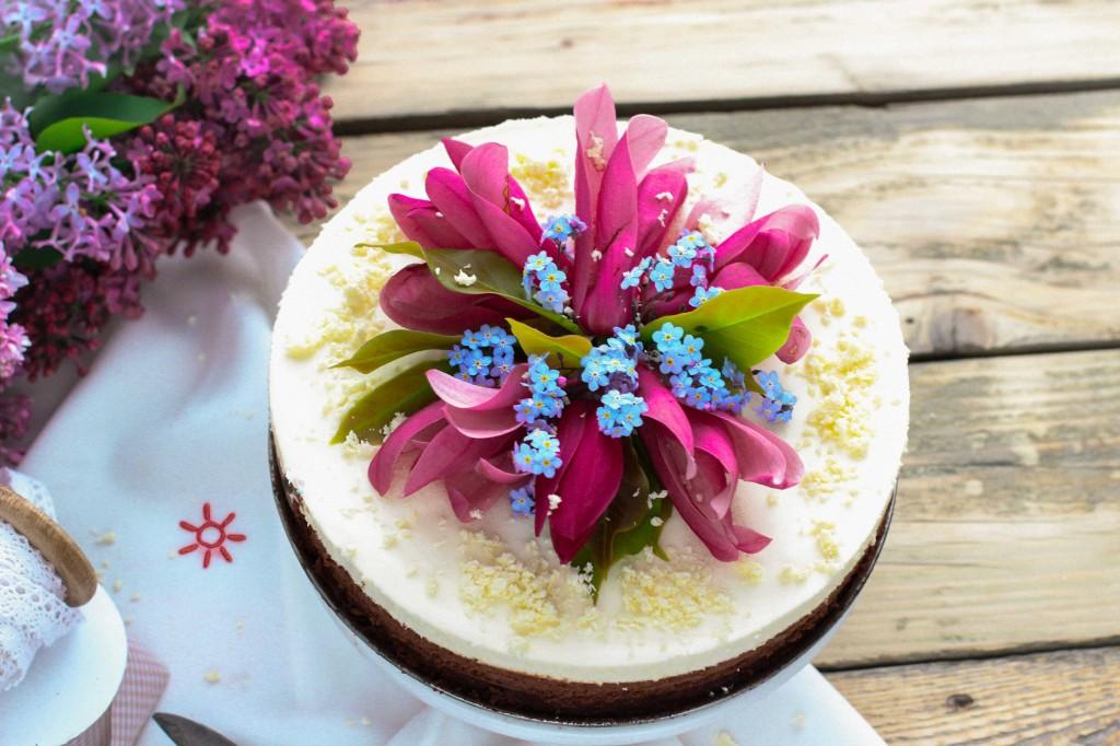 torta6 (1 of 1)