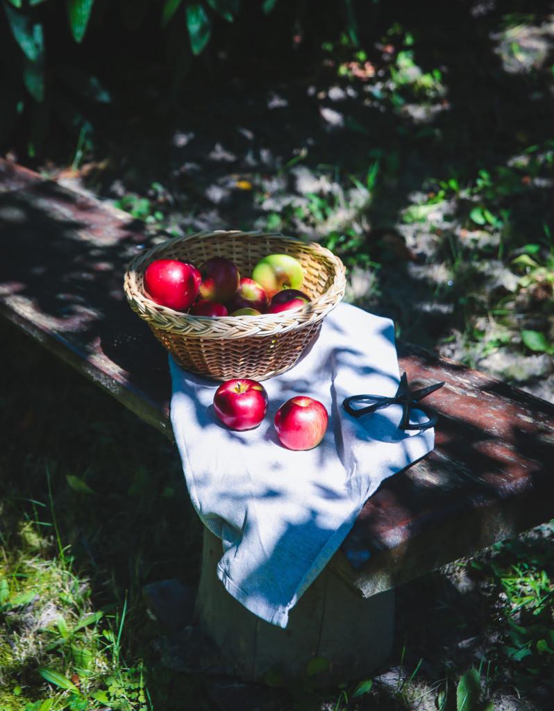 jablkovy3 mini